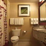 King Guest Room Bathroom