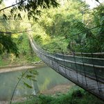                    Footbridge access to elephant training center