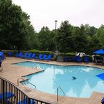  Hilton Charlotte Pool