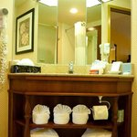 Vanity & Bathroom Amenities