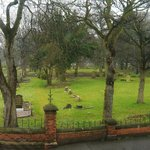 Historic Linthorpe cemetery is a haven for wildlife