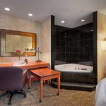  Garden Spa Suite