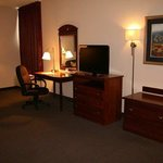 Hampton Inn Springfield South Foto