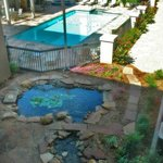Pool and Whirlpool Spa