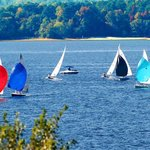 Regatta on Lake Hartwell