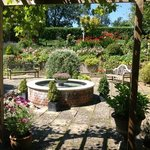                                      Terrace garden at Spinney House