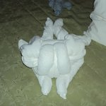 Housekeeping made us animals with towels e