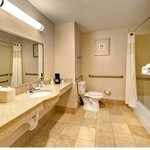  Standard Accessible Bathroom