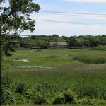  View of kayaks in the marsh across from Tupper Inn