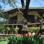 Photo of Gilded Iguana Hotel Nosara