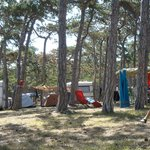 Photo of Camping Planik