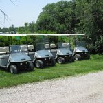 Rental Golf Carts