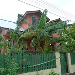 Foto de Roatan Backpackers' Hostel