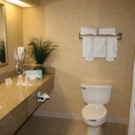  King Parlor Suite Bathroom