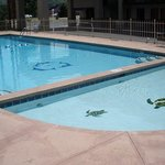  Master Host Inn Pigeon Forge TN Swimming pool