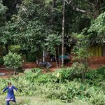  view from the field, thats our mud cottage, and hammocks infront of the cottage