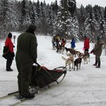  Sled team at Sawbill checkpoint, John Beargrease sled dog event