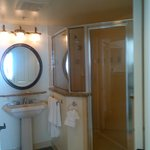  Shower Area in Master Suite