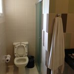 toilet with shower adjacent