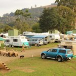 Huon Valley Caravan Parkの写真