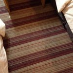  stain and wax on carpet.