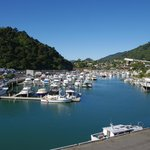 View of Picton Harbour