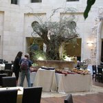  Olive Tree dining courtyard