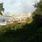  view from garden of Funchal
