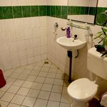  Proboscis Lodge - Bathroom