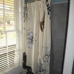 Spacious shower..loved the curtain design.