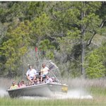 Wild Thang Airboat Tours