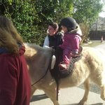  Pony riding