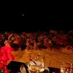 Dinner table view of sand and ocean, with moonlight.