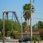 Φωτογραφία: Holiday Inn Express & Suites Tampa USF-Busch Gardens