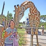 Bonding with the crazy giraffe that thinks it is a dog