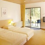  Room - Hampshire Hotel - Mooi Veluwe
