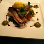 Salmon & Sea Bream