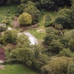  Nut Tree Farm 2 acres of woodland, orchard and organic garden