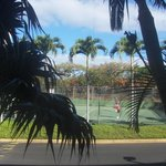  View of tennis court from room