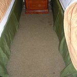 Nasty, dirty carpet between beds