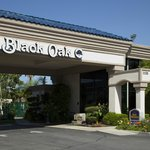 BEST WESTERN PLUS Black Oak