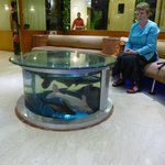  fish tank in reception area