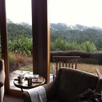  view from private living area, misty morning.