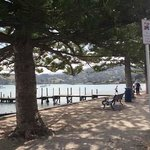 Akaroa Bay, walk around and enjoy