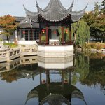  Dunedin Chinese garden , NZ