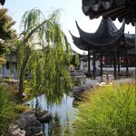  Chinese garden , Dunedin, NZ