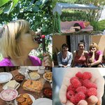 Garden fruits...book now! marined61@rambler.ru