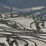 Yuanyang rice terraces at sunrise