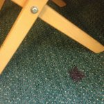 red carpet stain...blood?  Entire carpet of filthly