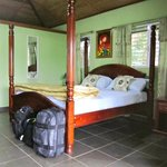  Inside Harpy Eagle Cabana